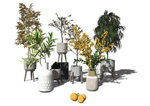 现代盆栽植物花瓶绿植装饰品SU(草图大师)模型