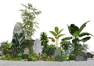 新中式景观小品假山石头景观植物盆栽枯山水灌木仙人掌SU(草图大师)模型
