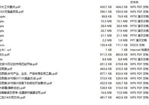 乡村振兴策划分析——19套,乡村振兴,乡村旅游,美丽乡村PDF文本方案