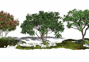 现代景观树景观小品鸡蛋花乔木植物石头植被SU(草图大师)亿博网络平台