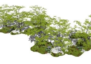 现代植物景观树乔木石头草坡SU(草图大师)模型