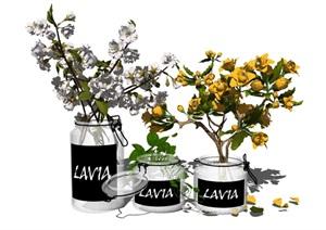 现代盆栽装饰品花瓶摆件植物花卉SU(草图大师)亿博网络平台